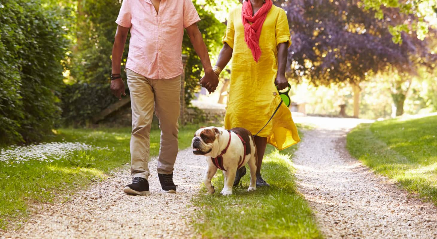 A couple walking their dog at one of the Placerville, CA, parks