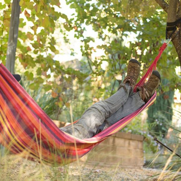 Man in a hammock in the garden