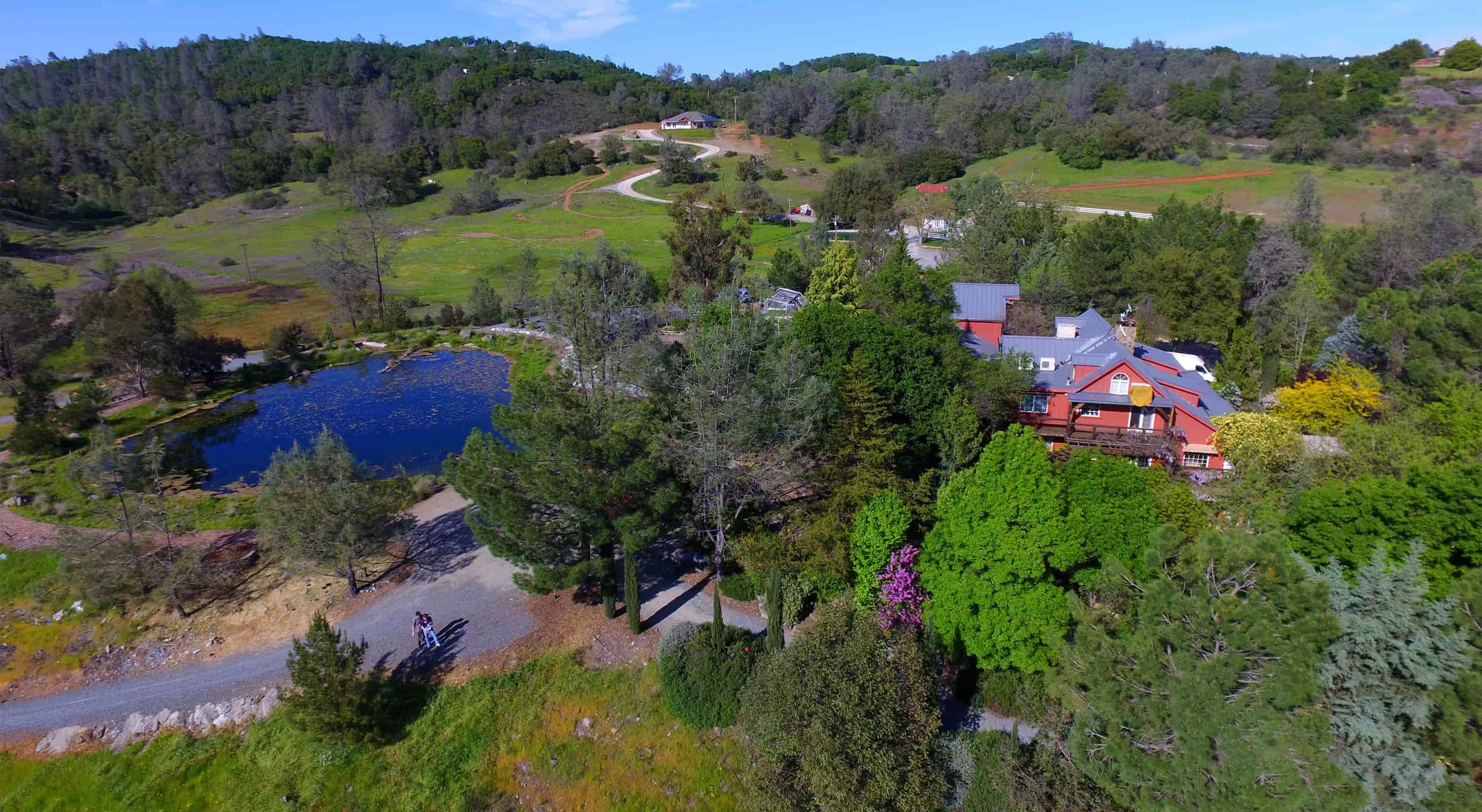 Aerial view of our Placerville CA Lodging with trees and pond