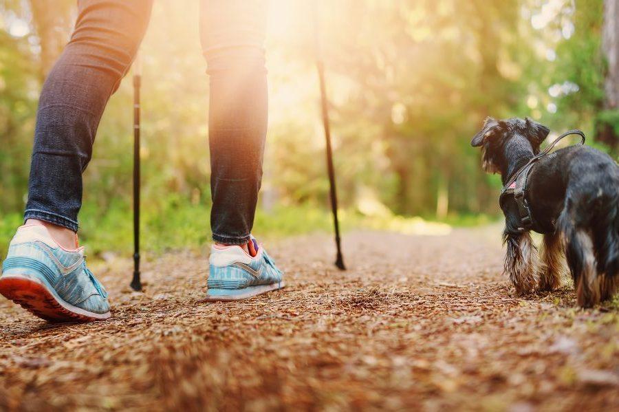 woman hiking near sacramento with a dog